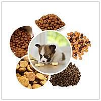 Pet food/ Dog Food/Cat Food Production Line
