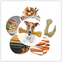 Pet chewing snack production line